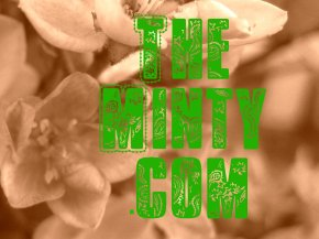 themintycom