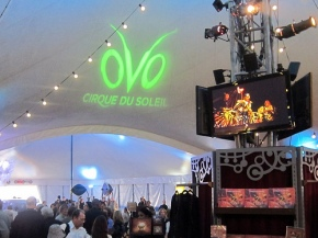 oVo, the latest Cirque du Soleil show in Santa Monica