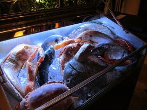 fresh seafood display