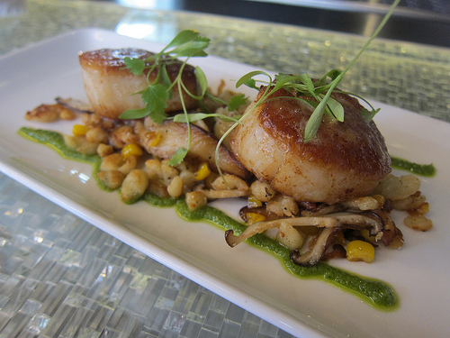 scallops at Trace