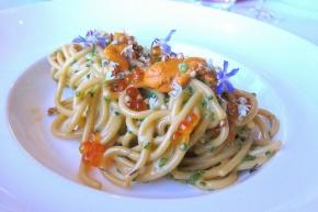 pasta with uni