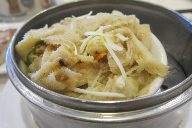 tripe with XO sauce