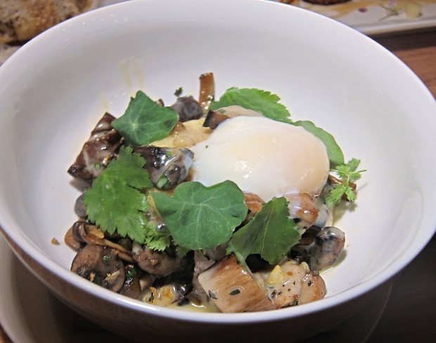 roasted wild mushrooms and poached egg
