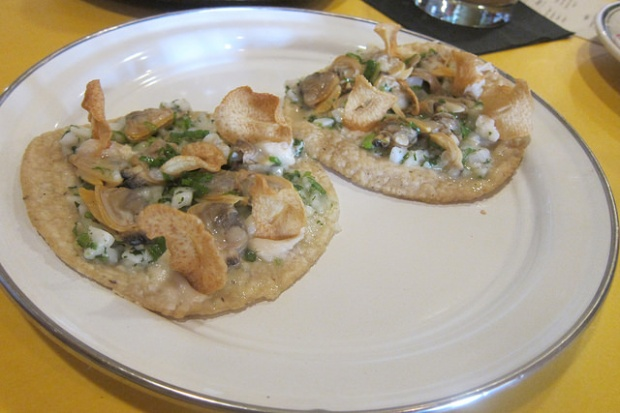 clams and lardo tacos