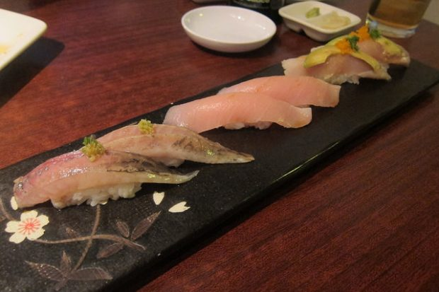 mackerel, yellowtail