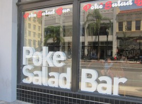 Poke Salad Bar takes over old Saladish space
