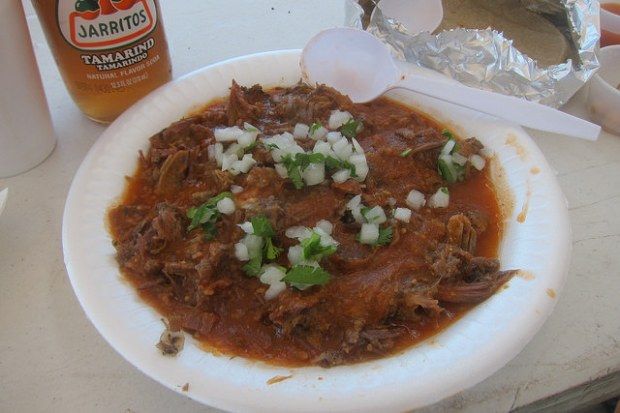 big plate of birria