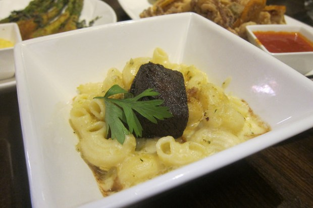 short ribs mac and cheese