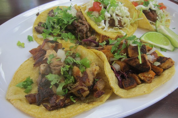tacos: porkbelly, shark, carne asada, shrimp, fish