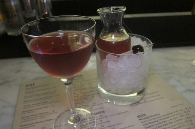Bartender's Special- BBS came with a pal