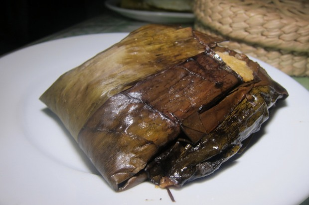 mole chicken tamal