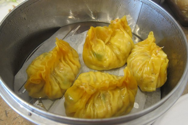 vegetarian shark's fin dumplings