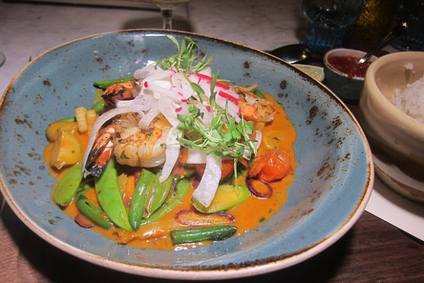 vegan vegetable curry (added shrimp)