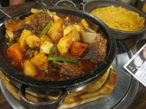 galbi jjim (shortribs stew)