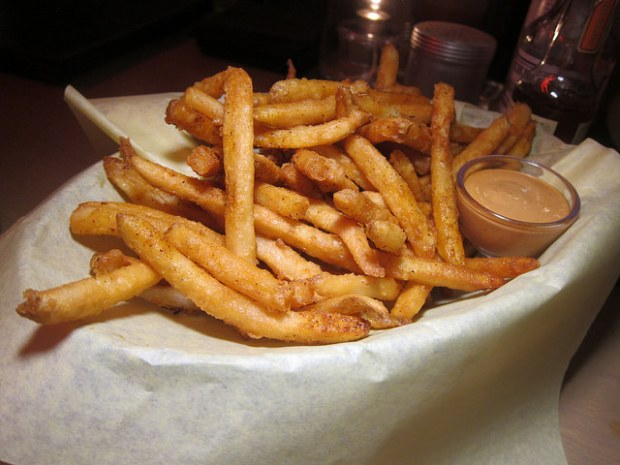 really awesome fries